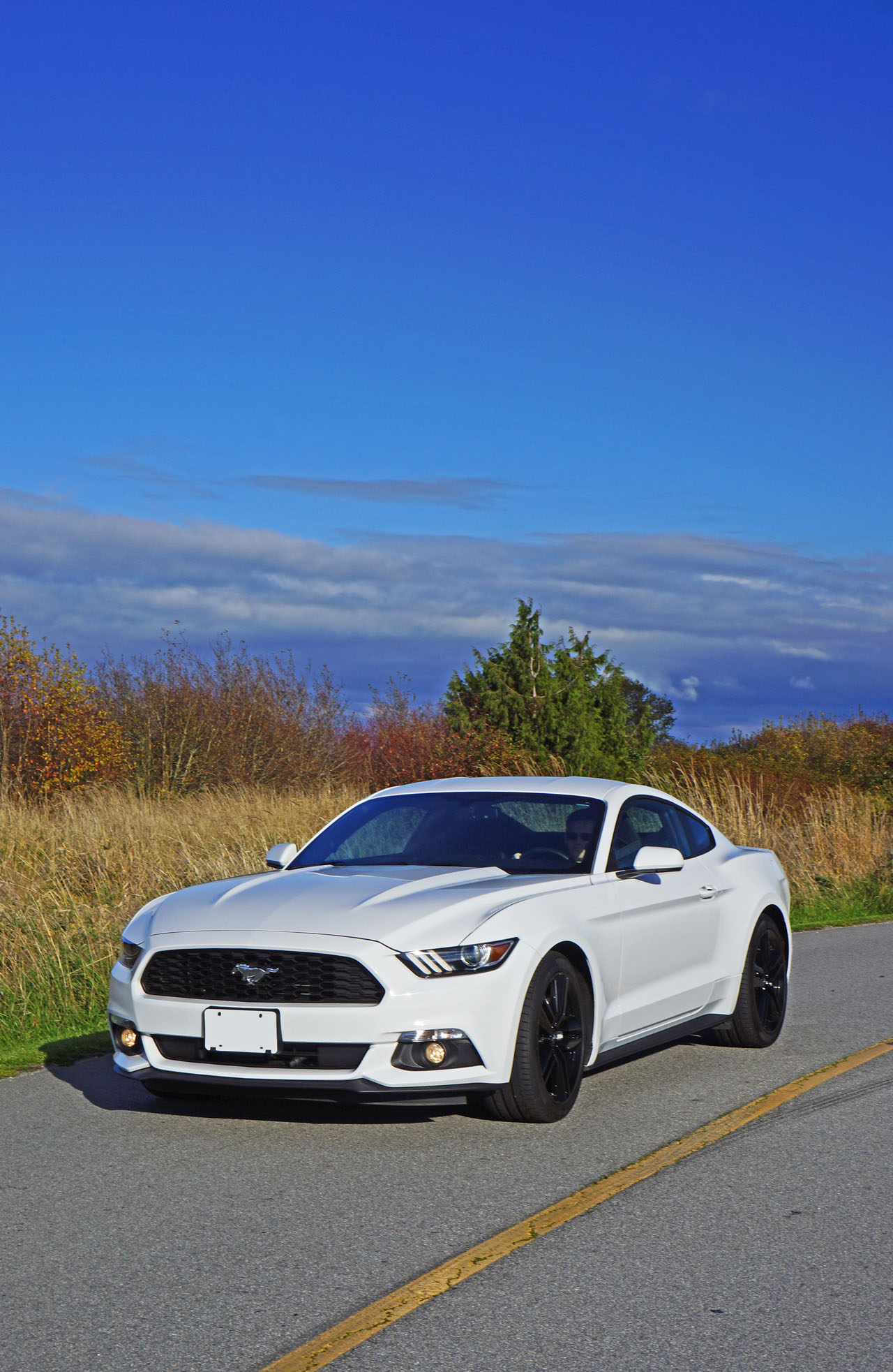 2016 Ford Mustang Ecoboost Fastback Road Test Review